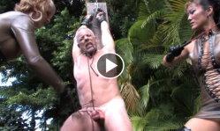 clubdom videos